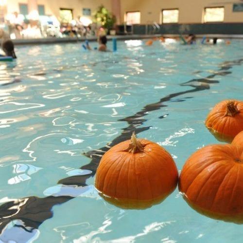 Pumpkins floating in pool