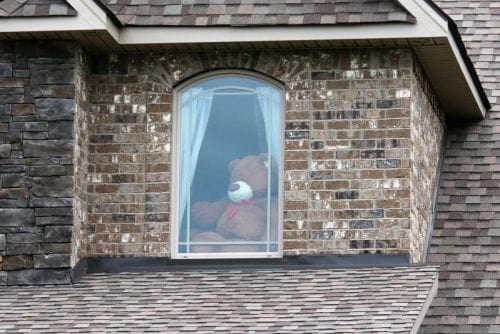 Bear hunt at home - Bear in window
